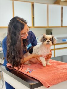 vet tech with dog